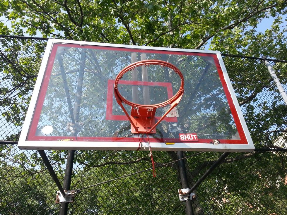 sara d. roosevelt park court new york
