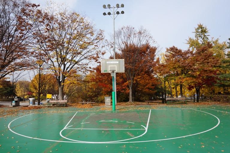 seoul olympic park basketball